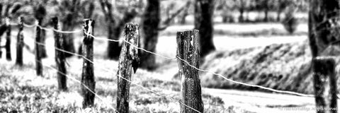 Black and White Fence Art Prints for Sale
