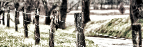 Rustic Fence Art Prints for Sale