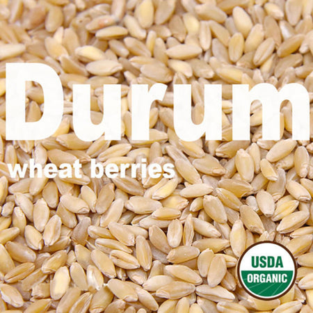 organic-durum-berries-firewalker-ovens-usda-approved