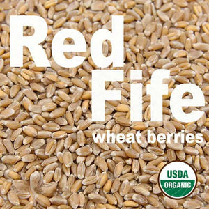 organic-heirloom-red-fife-wheat-berries-firewalker-ovens-usda-organic