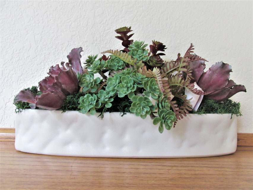 Seashell and Artificial Succulent Window Sill, Ledge or Desk Top Arrangement - Odyssey Creations