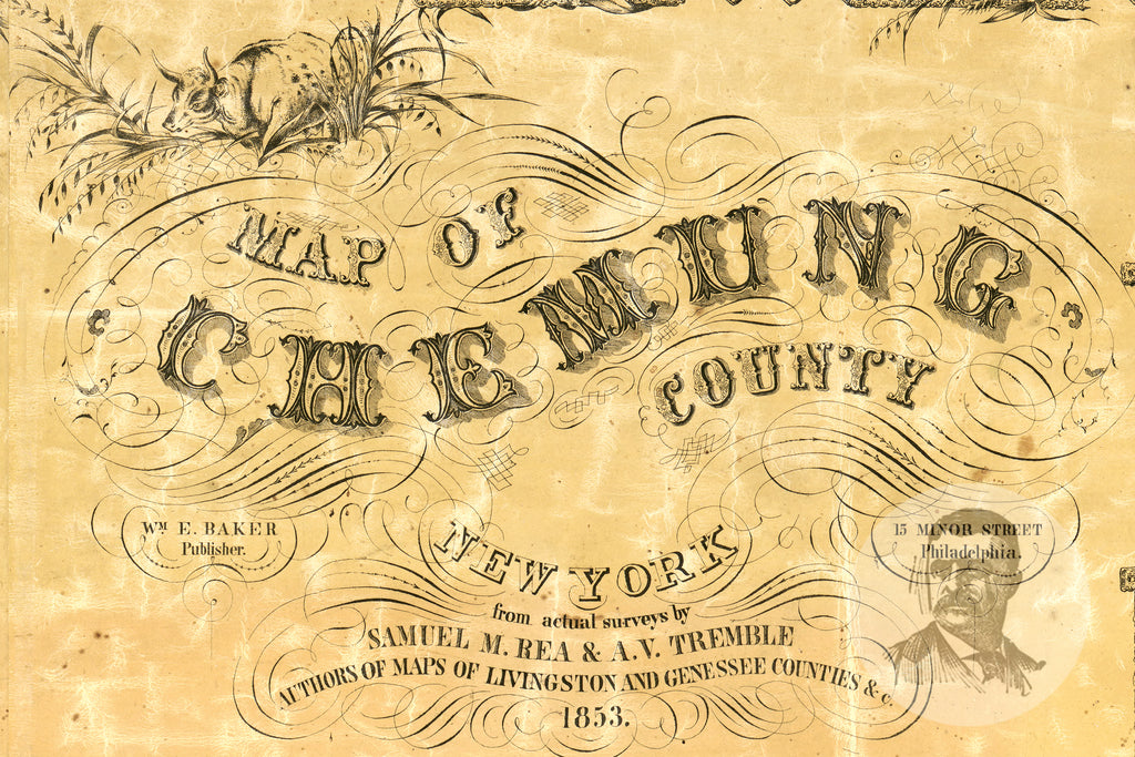 Chemung County, NY 1853 Land Ownership Map - Ted's Vintage Maps