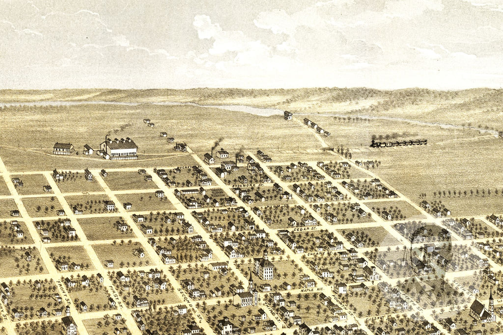 Faribault, MN Historical Map - 1869 - Ted's Vintage Maps