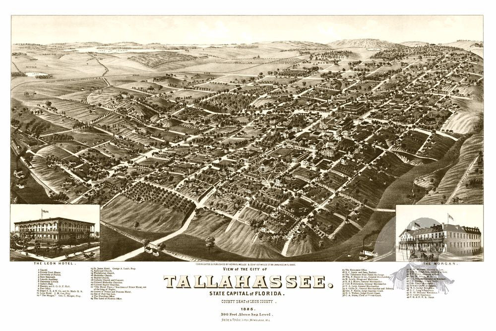 Tallahassee FL Historical Map 1885 Teds Vintage Art
