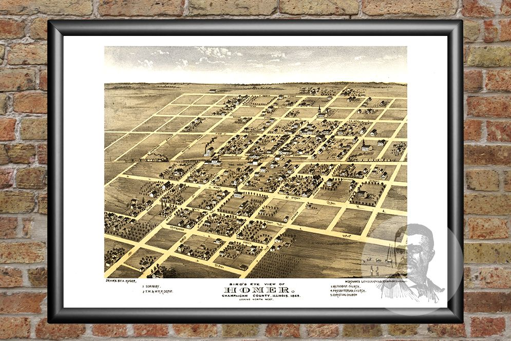 Homer, IL Historical Map - 1869 - Ted's Vintage Maps