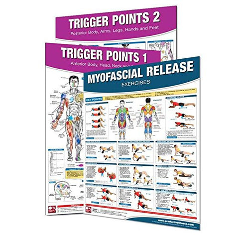 (3 Pack) Productive Fitness Trigger Points and Myofascial Release Poster Set