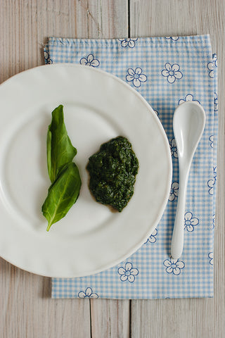 Baby First Foods Four Months Old Spinach Baby Puree