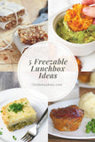 Little Mashies 5 Freezable Lunchbox Ideas