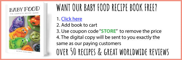 Little Mashies baby food recipe book