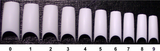 20 CT. SAMPLE SIZE - PRE-ETCHED® LOTUS™ - PRO NAIL TIPS - WHITE