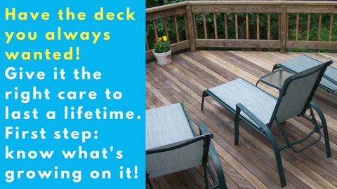 best composite deck cleaner