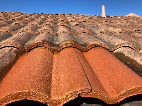 Tile Roof After Cleaning But Still Wet