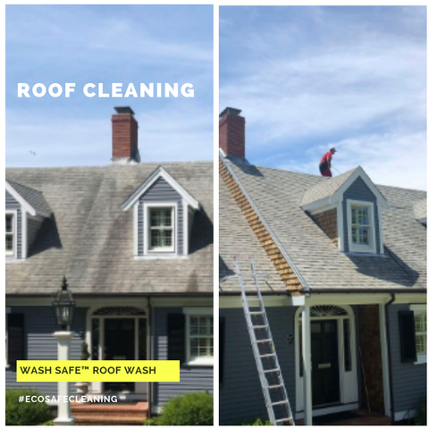Image of Roof, Cleaning, Roof Wash, Pressure Washing, Chemicals, Cleaner, Wash Safe, How to Clean Your Roof, Moss, Asphalt, Mold, Algae, Moss, Stains,