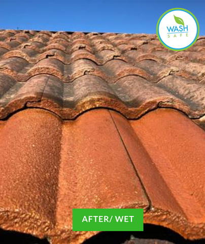 Image of Tile, Roof, Wash, Roof Cleaning, Clay, Slate, Concrete, Wash Safe, How to clean tile roof, red roof tiles, moss, algae, mold