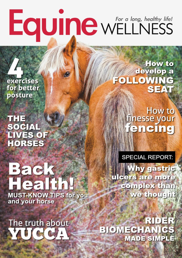 HempMy Pet has full a page featured in Equine Wellness Magazine