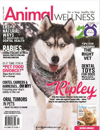 HempMy Pet is featured in the February issue of Animal Wellness Magazine