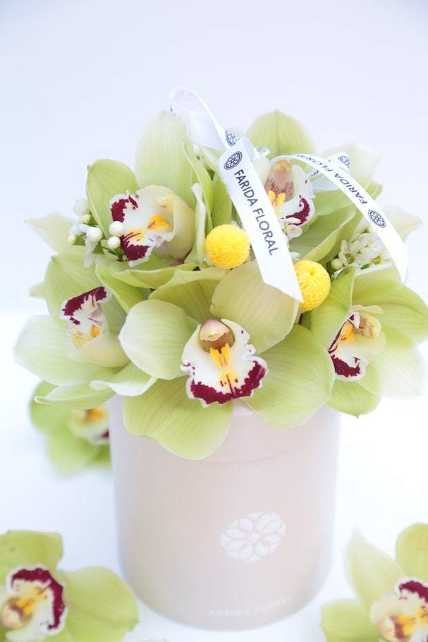 Garden Mix Orchids (Color Options) - MOM 2021