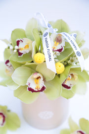 Easter Garden Mix Orchids (Color Options)