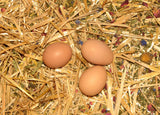 Chicken Coop Nesting Box mix | Nest Box Herbal Aromatherapy 1/4lb.