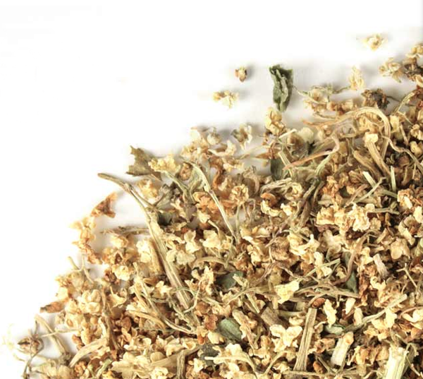 elder flower tea recipe