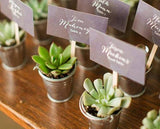 Mini Galvanized Buckets | 24 Ct., Great for Succulent Wedding Favors