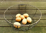 Large Chicken Wire Basket from The Tiny House Farm