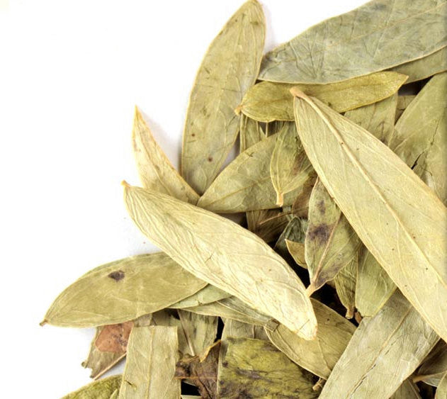 Senna Leaf Tea |  Tiny House Farm Premium Loose Leaf Tea 1/4lb. in Bulk