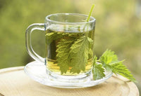 Nettle leaf tea for weight loss
