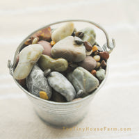 buy beach pebbles