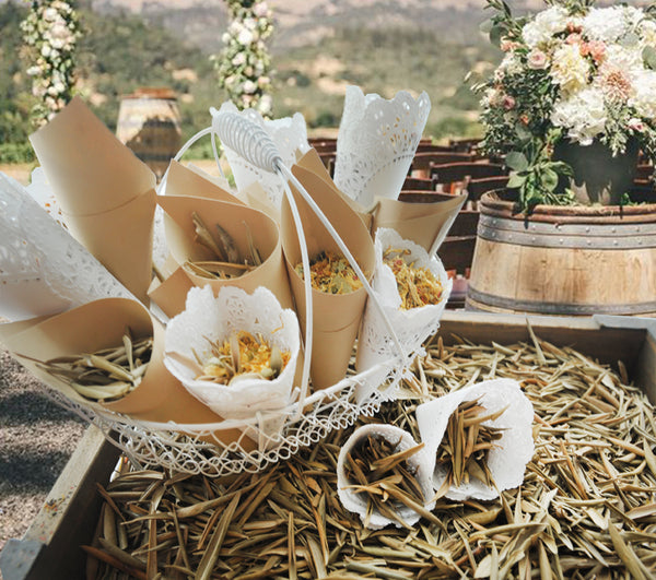 Wedding Exit | Vineyard Wedding, Rustic Wedding, Woodland Wedding | Vineyard Blend for 100-150 guests