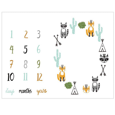 Baby newborn milestone blanket photo shoot photography prop days months years
