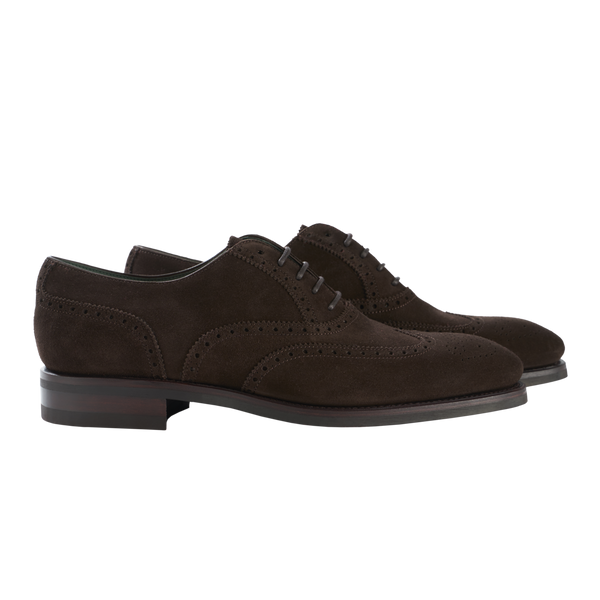 Carmina Wingtip Oxford in Dark Brown Suede