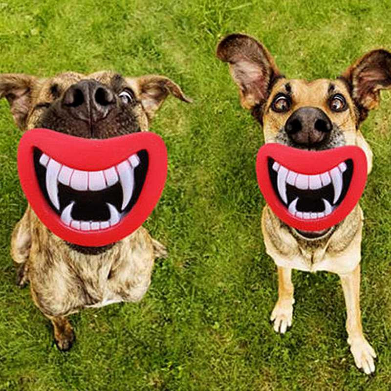 Cute Dog Chew Toy