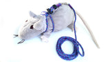 Guru Gear Rat Harness & Leash Set