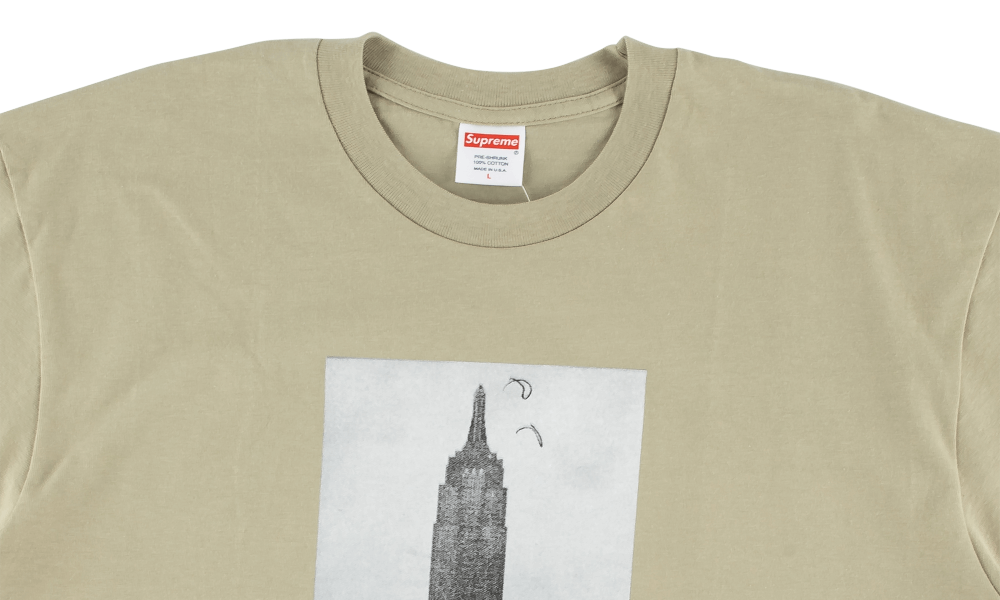"SUPREME x MIKE KELLEY EMPIRE STATE TEE ""CLAY"""