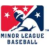 MiLB minor league baseball jerseys and MilB caps