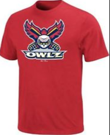 e09418693 MAJESTIC OWLZ MiLB LOGO YOUTH SHORT SLEEVE TEE JERSEY