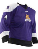 Teamwork Youth Ricochet Reversible Hockey Jersey   style 1567