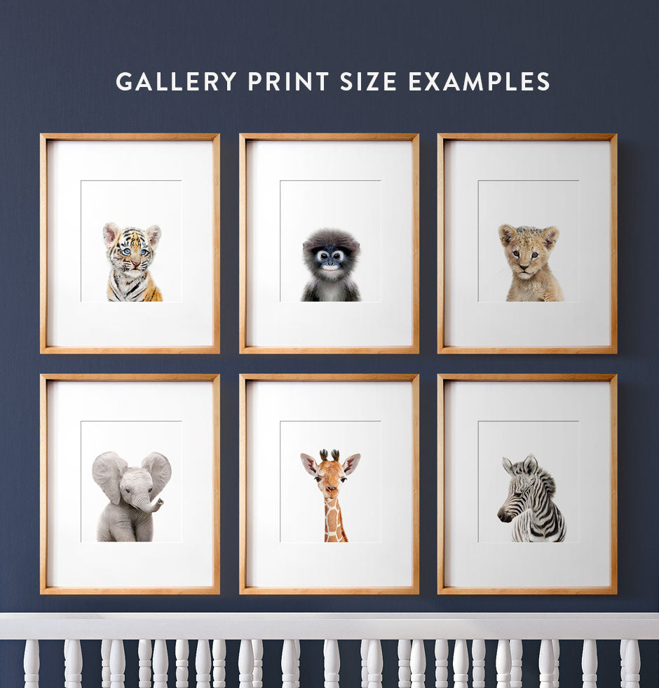 Gallery Print Size Examples
