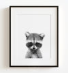 Baby Raccoon Black and White Printable Art