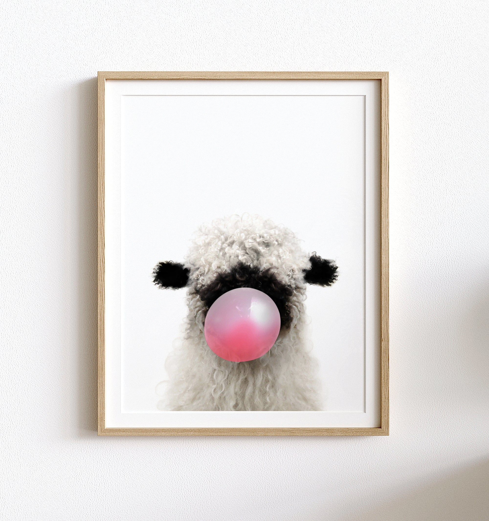 Baby Blacknose Sheep with Pink Bubblegum Printable Art