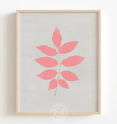 Botanical Silhouette No. 3 - Pink Printable Art