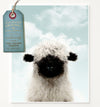 Baby Blacknose Sheep with Blue Sky Printable Art