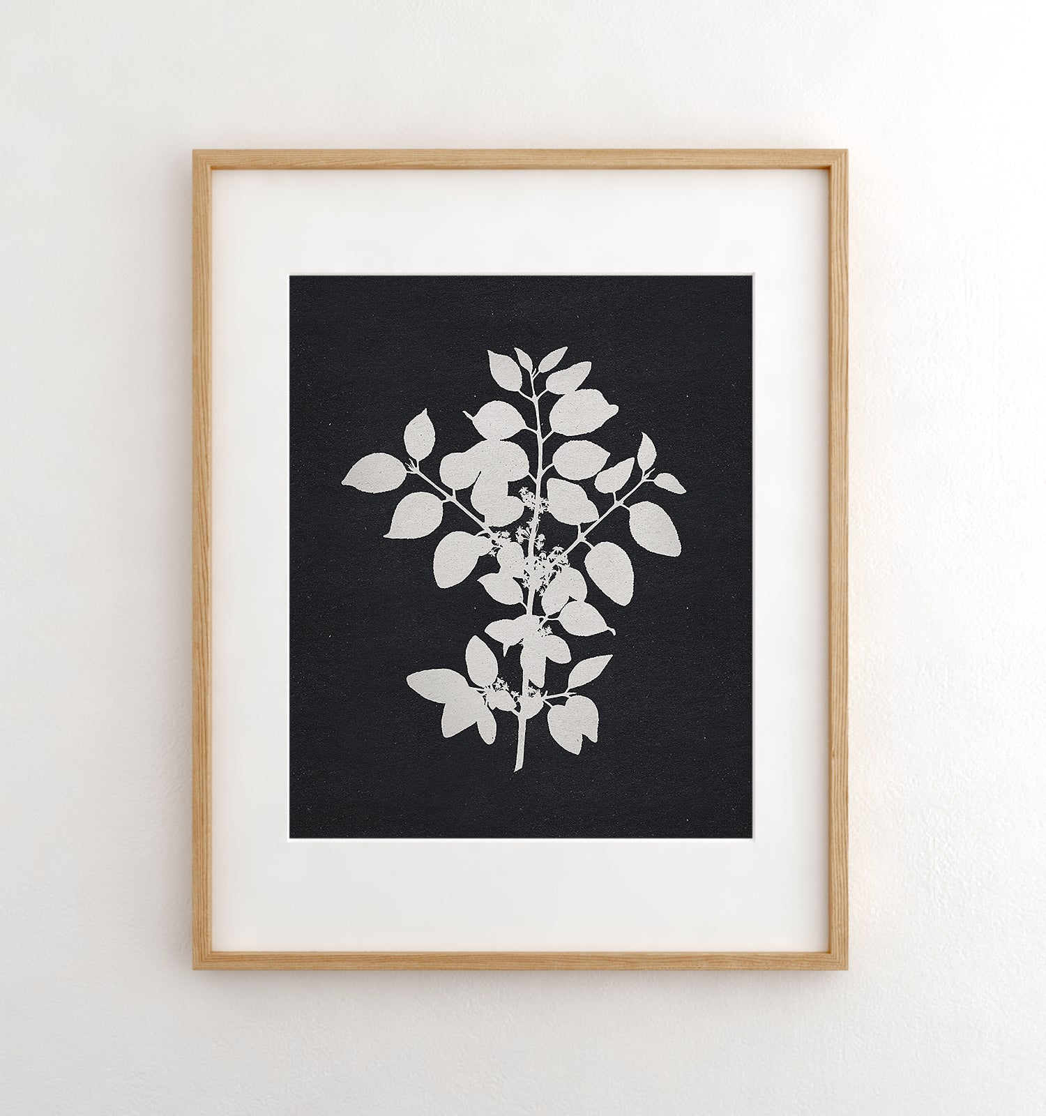 Botanical Silhouette No. 1 Printable Art