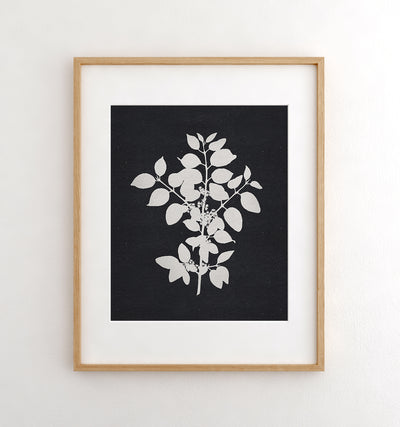 Botanical Silhouette No. 1