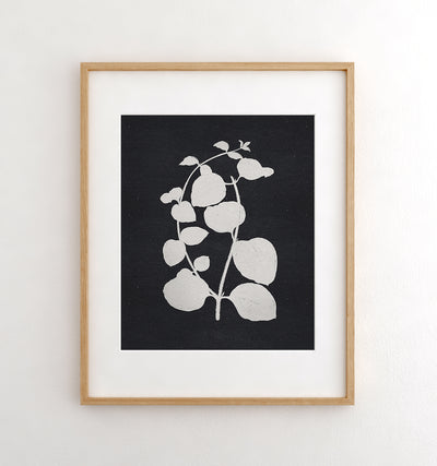 Botanical Silhouette No. 2