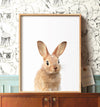 Baby Bunny Rabbit No. 2 with Blue Sky Printable Art
