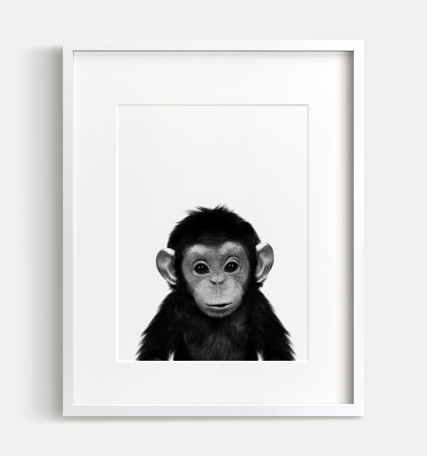 Baby Chimpanzee Print - Black and White - The Crown Prints