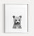 Baby Grizzly Bear Black and White Printable Art