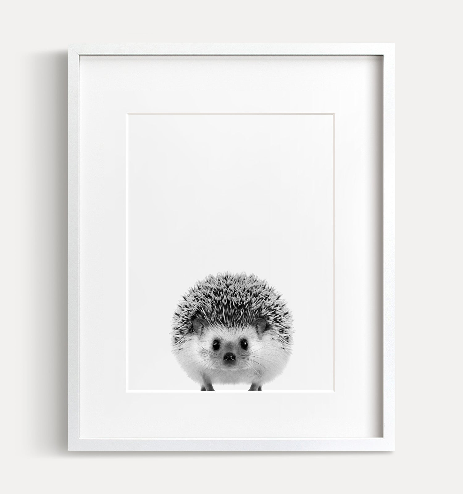 Baby Hedgehog Printable Art - Black and White